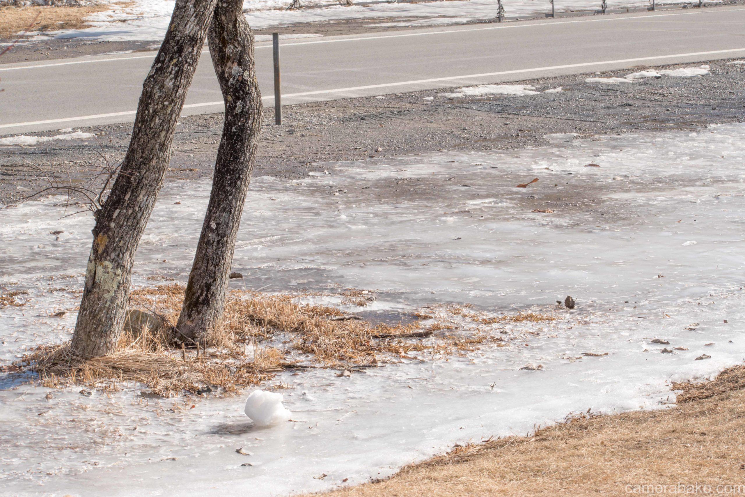 地面が凍っている