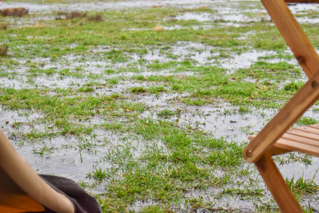 パンダTC 雨